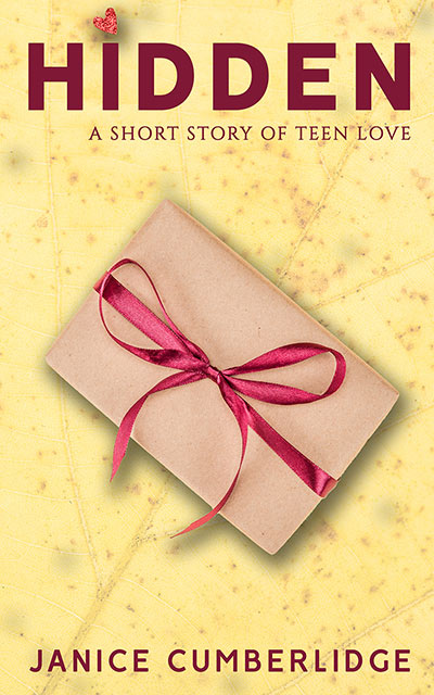 Hidden: A Short Story of Teen Love